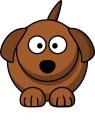 cachorro6